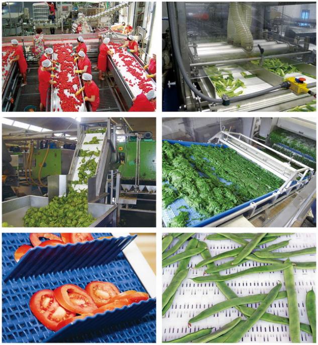 水果和蔬菜行業