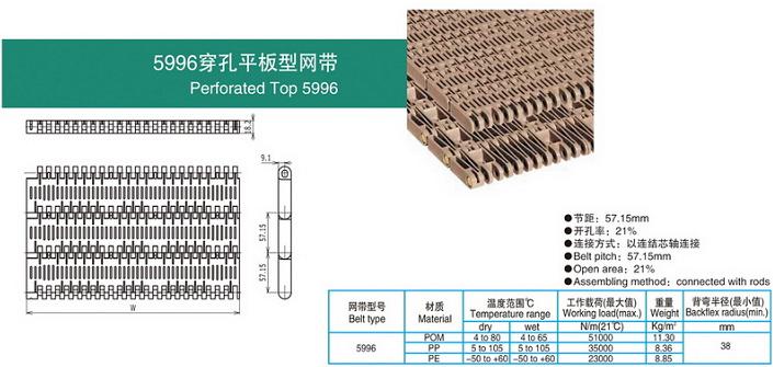 5996穿孔平板型网带