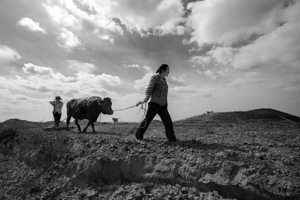 化肥的土壤污染