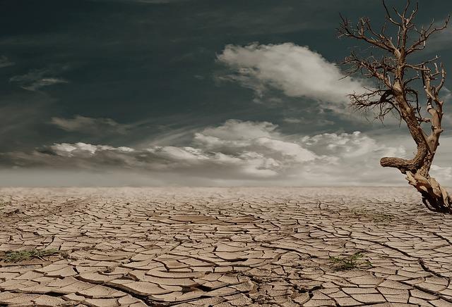 土地被破壞,土壤板結