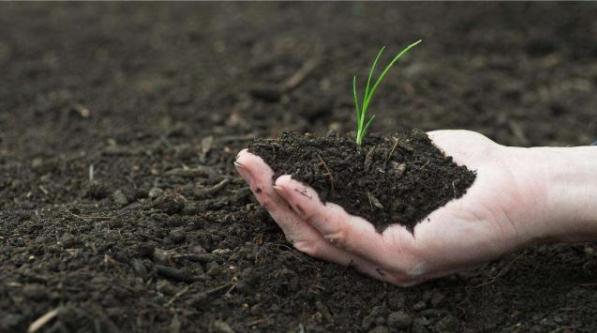 生物有機肥料的五大作用