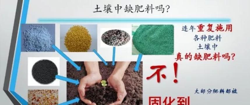 微生物肥料是農業的救命稻草