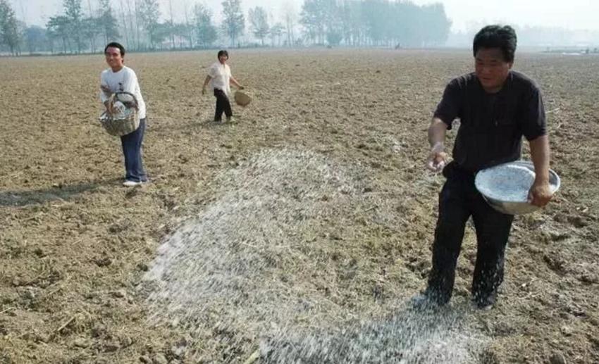 有機肥的未來,任重而道遠