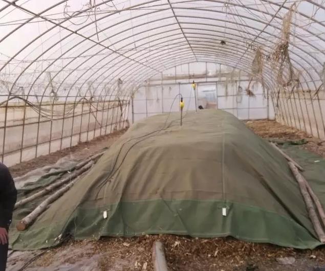 生物有機肥料的堆制場地