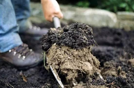 畝施有機肥的標準