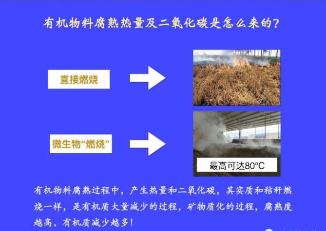 有機肥腐熟過程