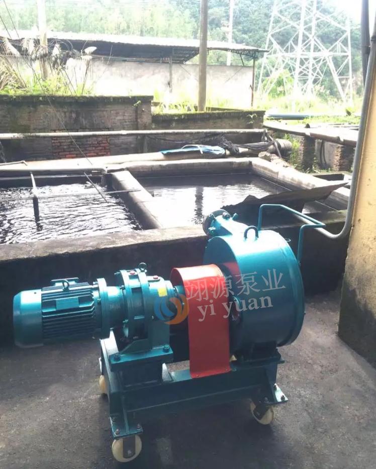排污泵应用案例展示
