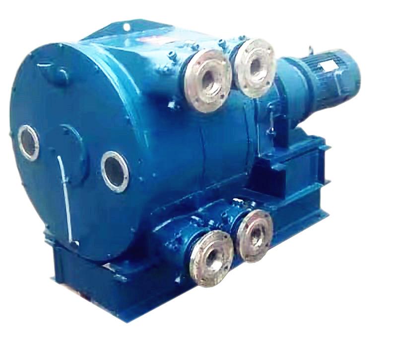 2YY100A-双管软管泵(全密封)
