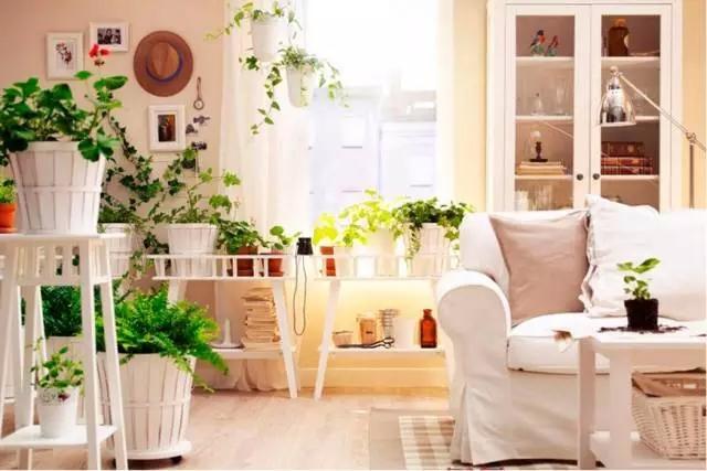 慈溪日式搬家是什么,和普通的搬家服务有什么区别?