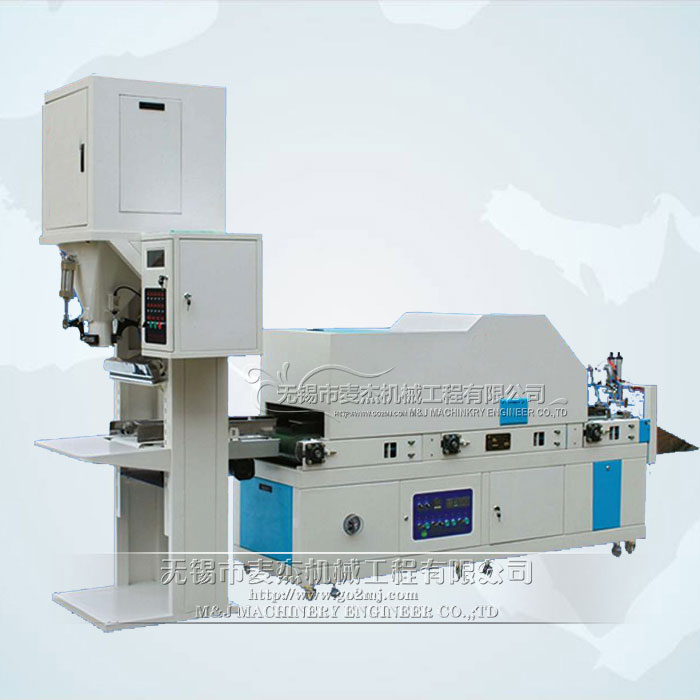 LCS-V2N6F1 Vaccum packaging machine for brick shape and pillow shape