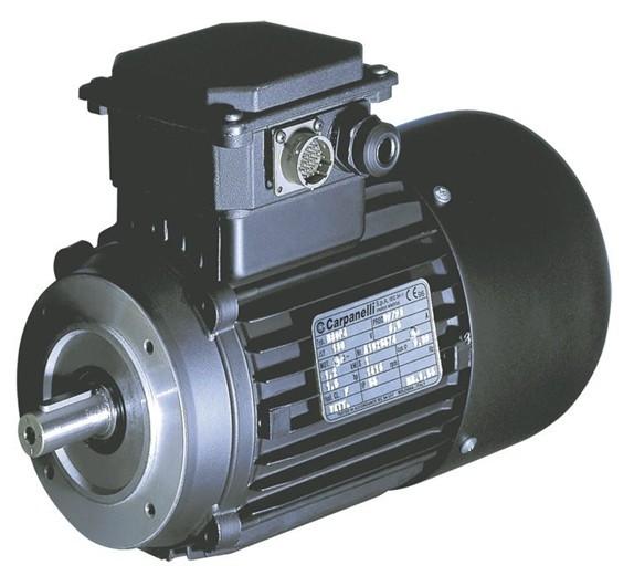 CARPANELLI电机