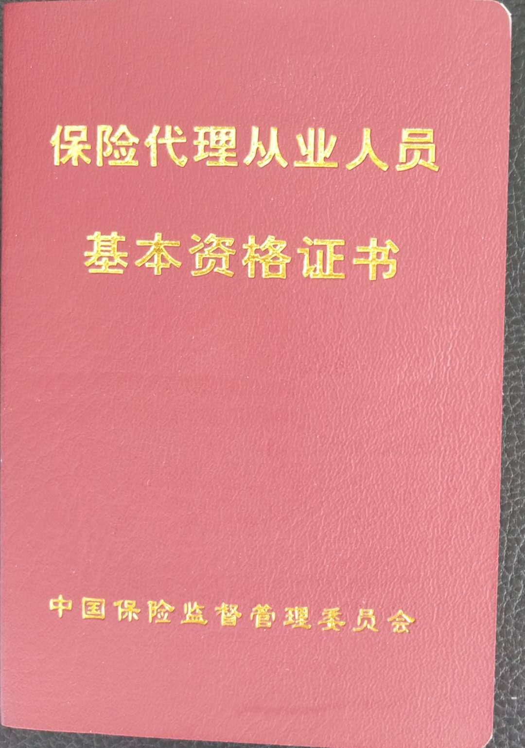 陈律师保险代理从业人员基本资格证书(2002)