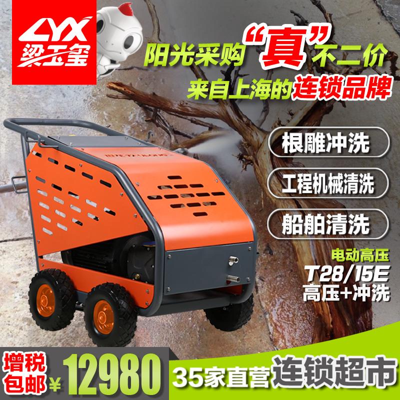 坦龙挖掘机车辆清洁高压清洗机T28/15E