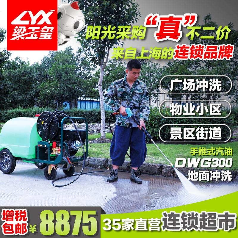 qy8com千亿官网登录手推式汽油高压冲洗车DWG300