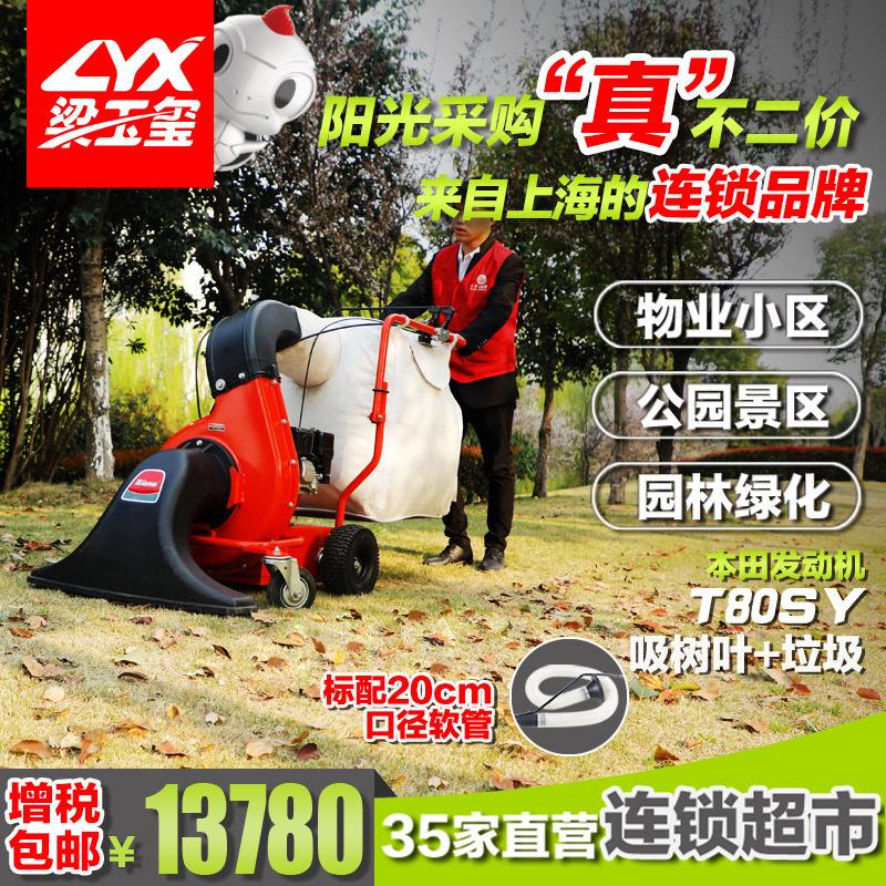 坦龙园林清洁用吸树叶机T80SY