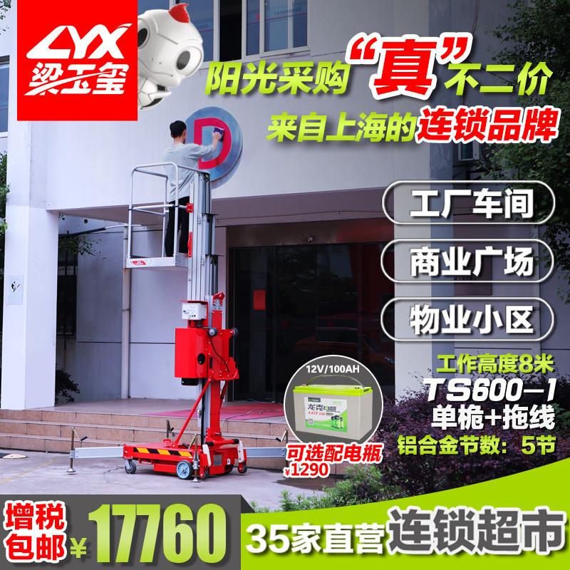 坦龙仓储物流用电动单桅升降机TS600-1