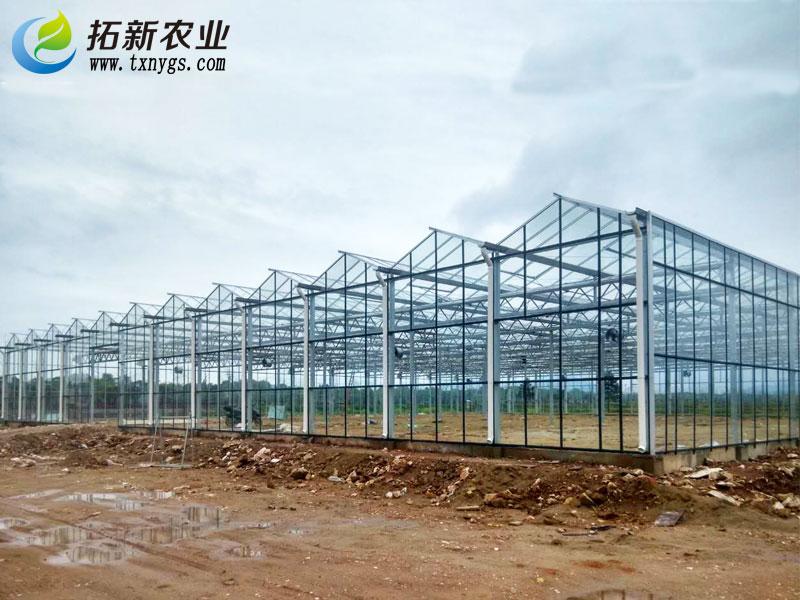育秧工厂温室