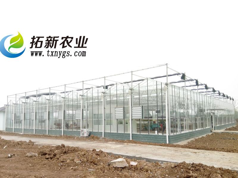 科研型玻璃温室