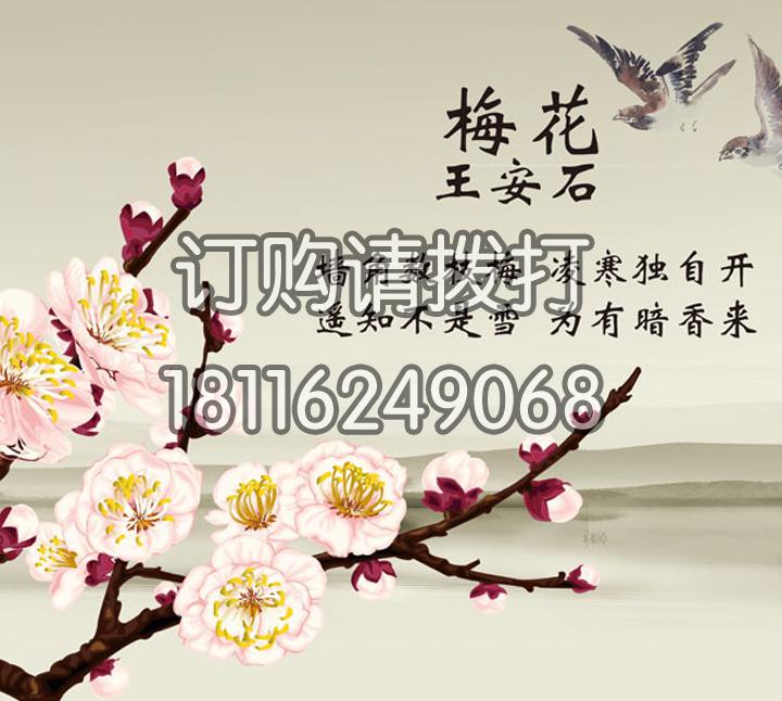 王安石诗词字画墙布ZH...