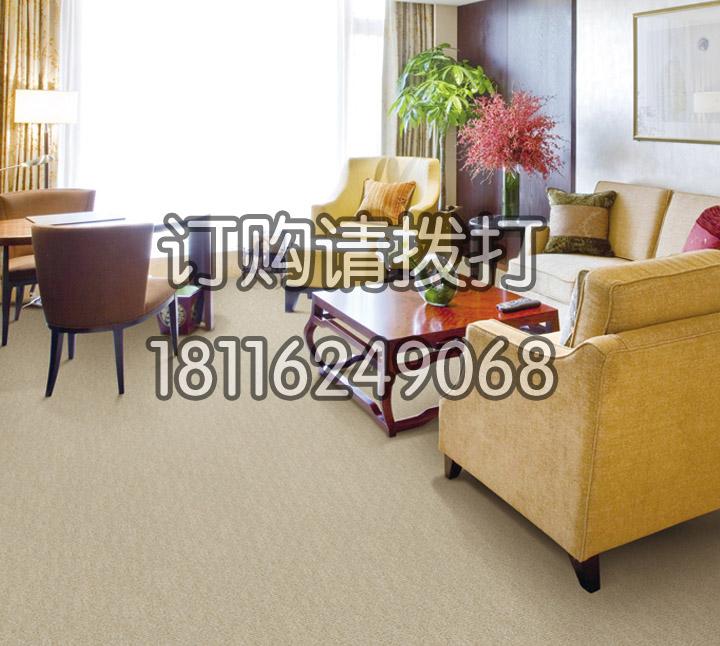 酒店休息区素色满铺地毯...