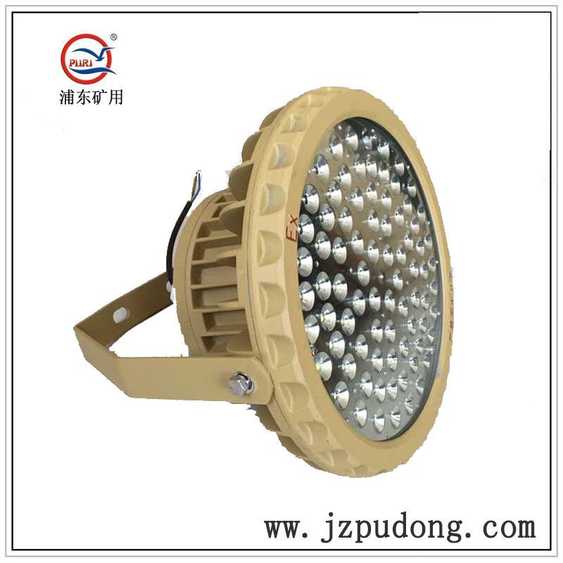PDLED-B圆形挂壁式吊杆式LED防爆灯50W80W100W120W