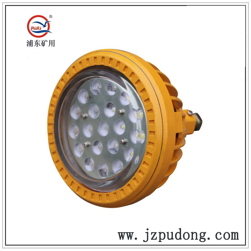 PDLED-I圆形吊杆式LED防爆灯20W30W40W50W80W100W120W
