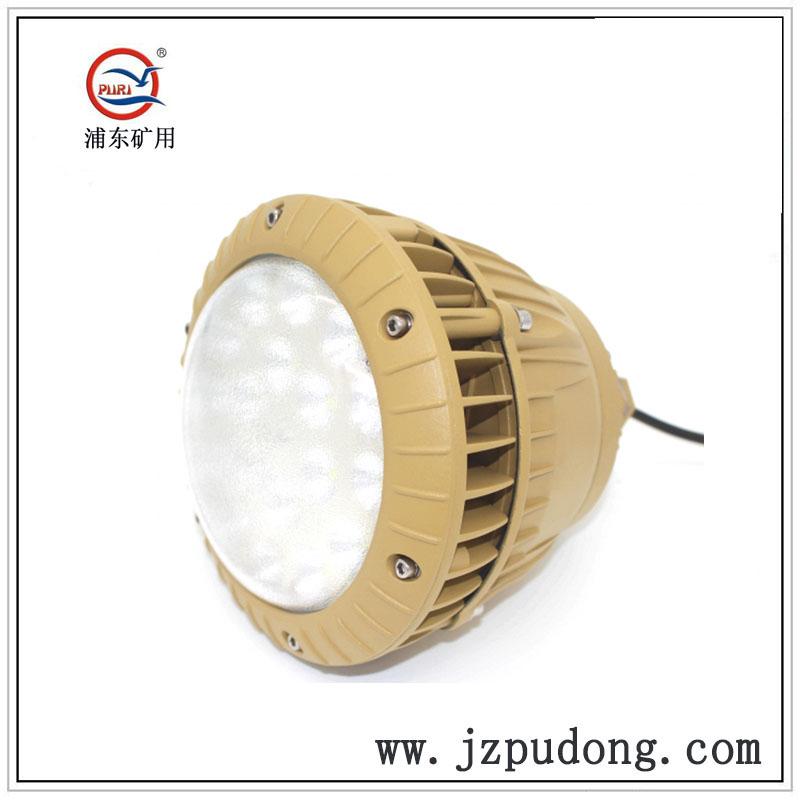PDLED-C节能防眩LED防爆灯20W30W40W50W70W100W