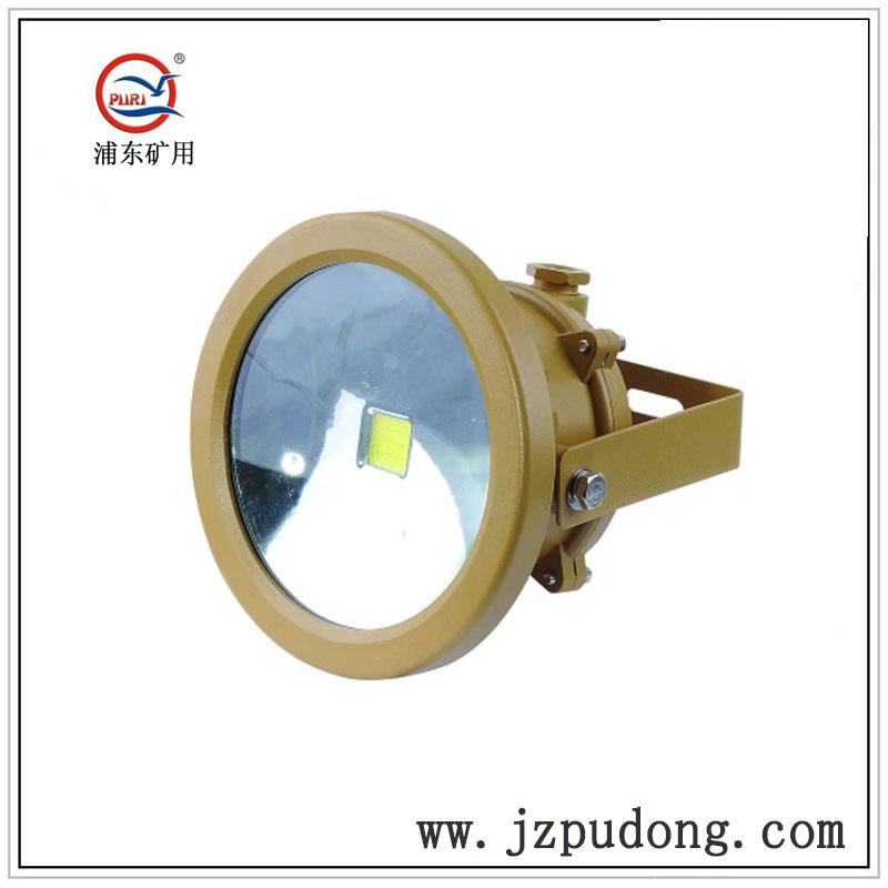 PDLED28-0节能集成LED防爆灯30W40W50W