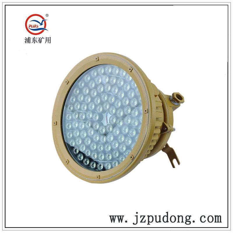 PDLED28-RC节能LED防爆灯50W60W80W100W120W