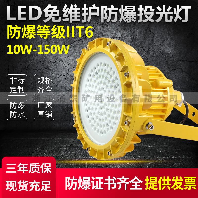 PDL202防爆投光灯