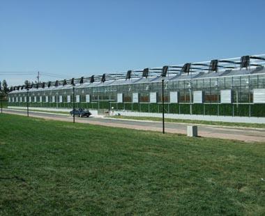 热烈祝贺汇丽阳光板成为长春农博园指定PC板材