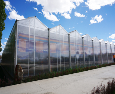 智能温室的高原明珠——记西藏日喀则地区江孜县红河谷现代农业示范区PC板温室