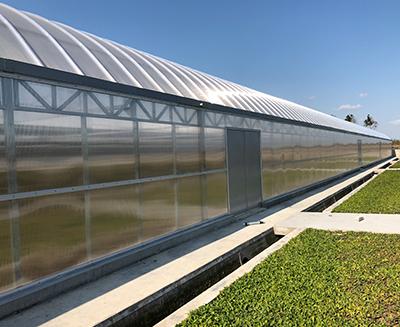 祥欣东滩养殖场大棚采光应用案例