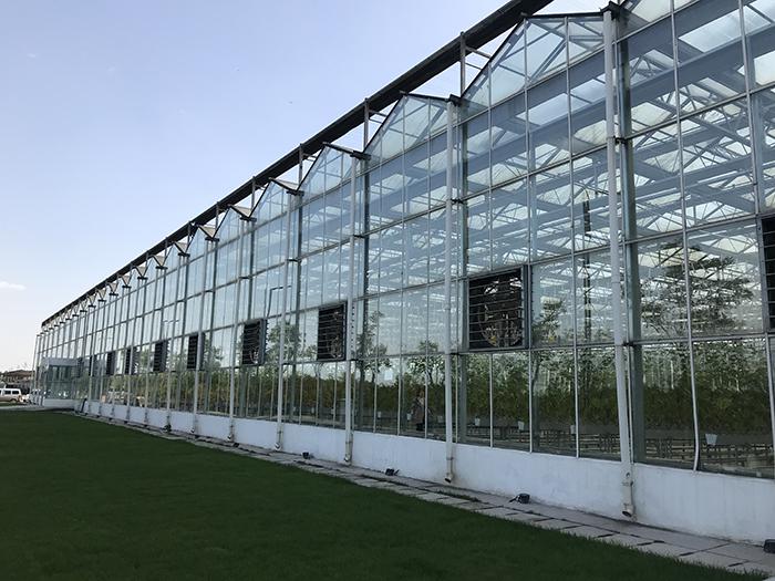 温室大棚用PC阳光板的优势有哪些?