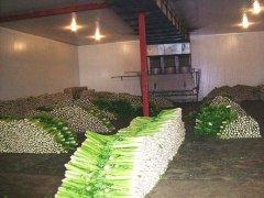 蔬菜水果保鲜冷库