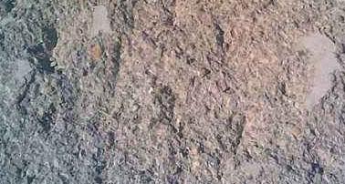 建筑混凝土冻融损伤剩余使用年限推定检测