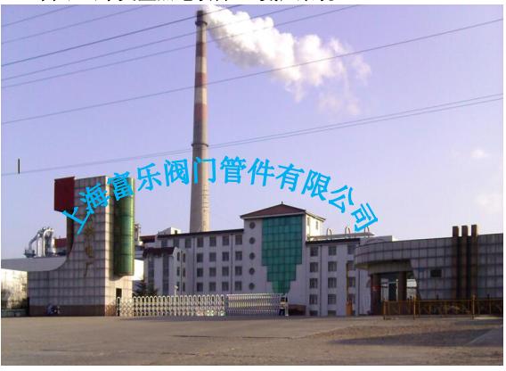 山东文登热电项目 (氨区系统)