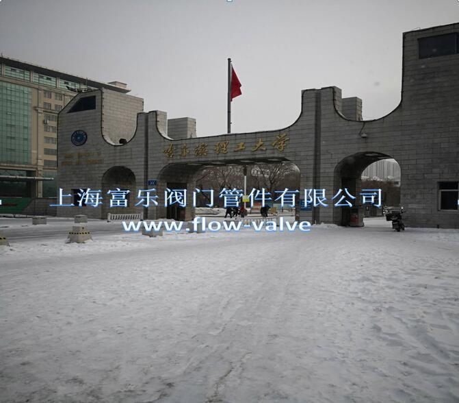 哈尔滨理工大学供热项目