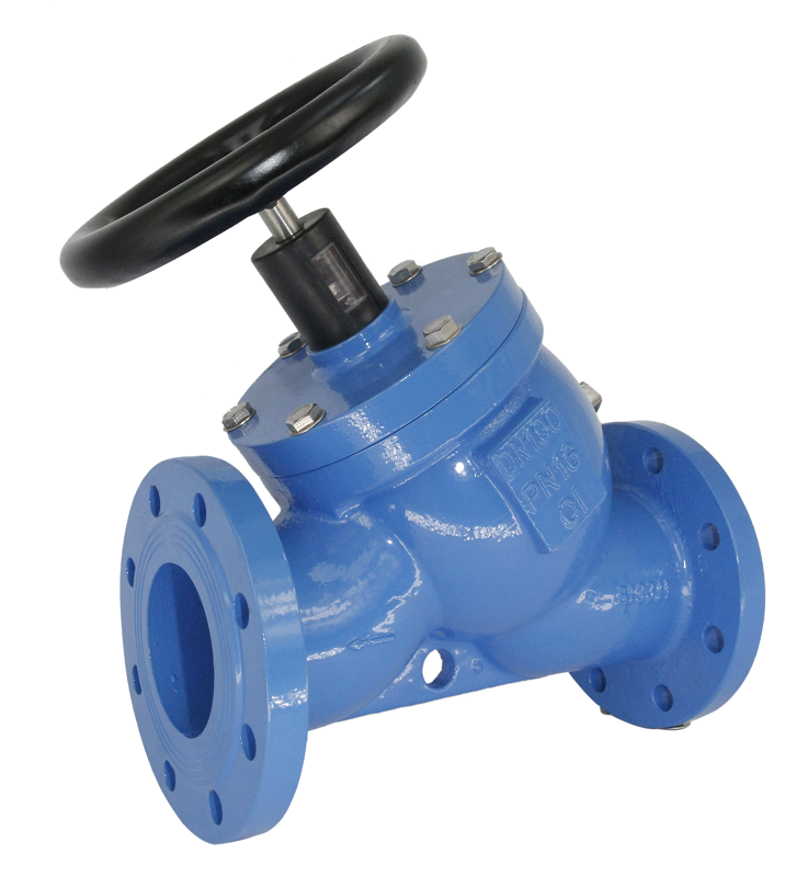 Iron body triple duty check valve