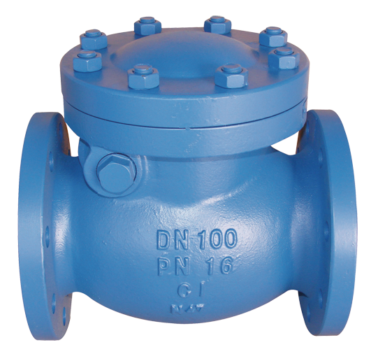 Iron body swing check valve