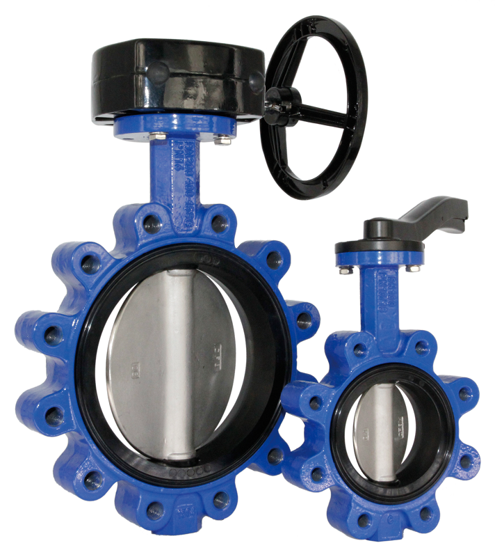 Lug type butterfly valve, DI body