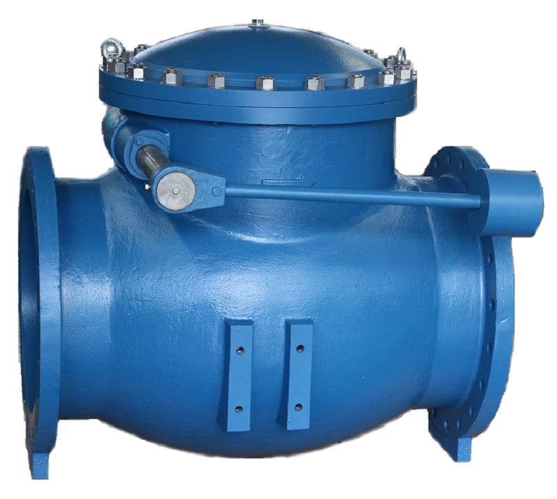 Iron body swing check valve with weight