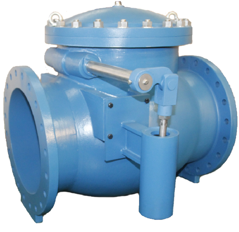 Iron body swing check valve with spring