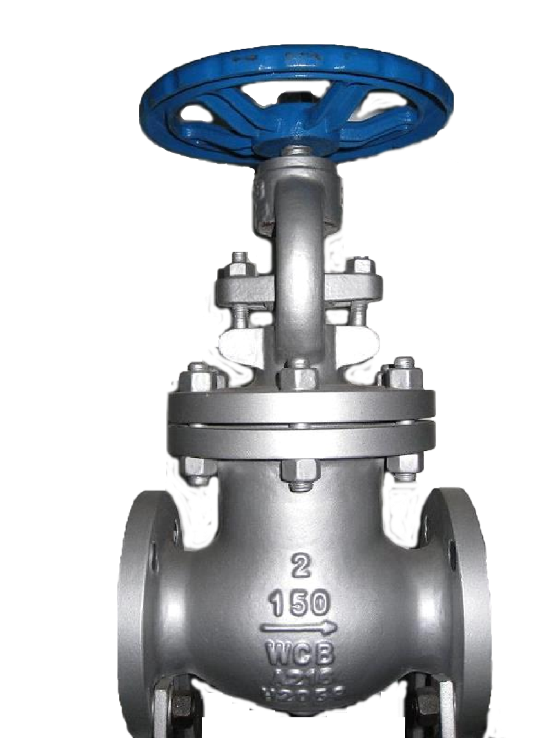 SS body flanged end globe valve