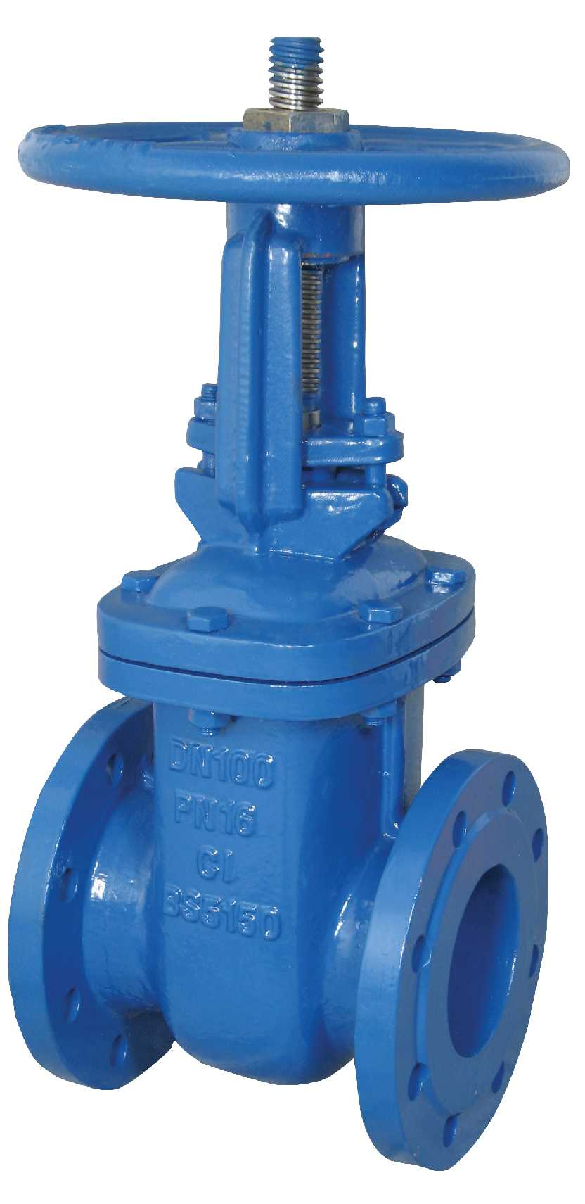 Iron body rising stem gate valve