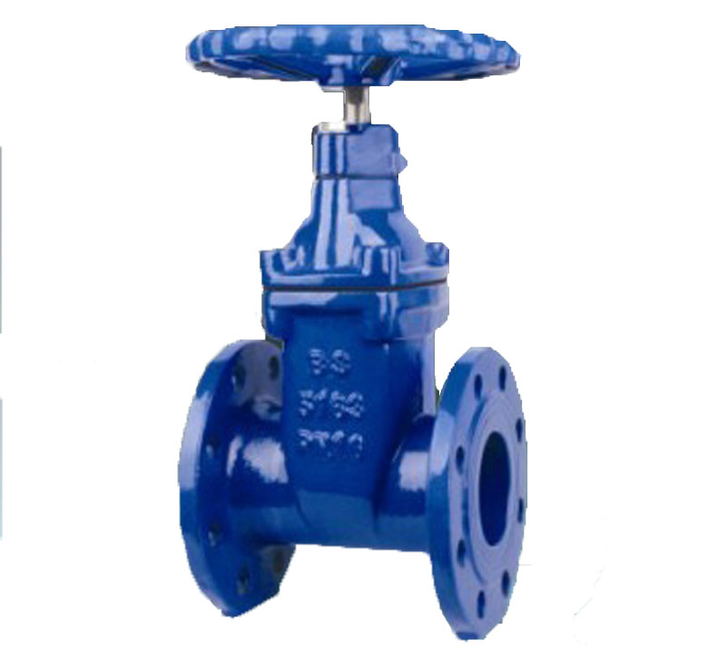 Iron body rising stem resilient seated gate valve