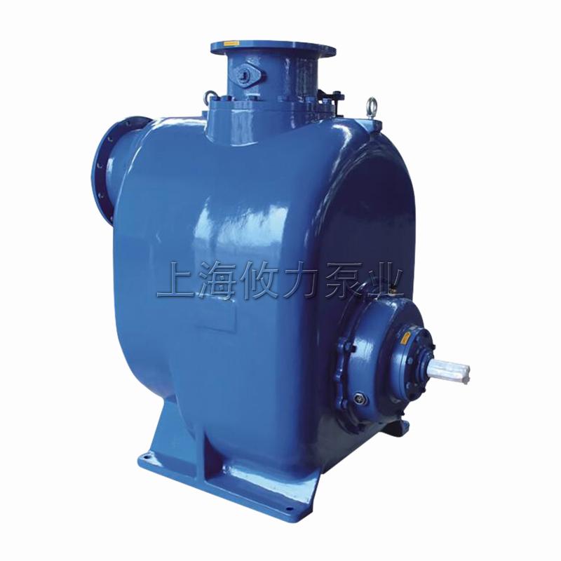 12寸大流量水泵自吸泵