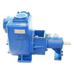 2寸小型污水处理泵