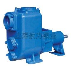 6寸自吸污水泵杂质泵