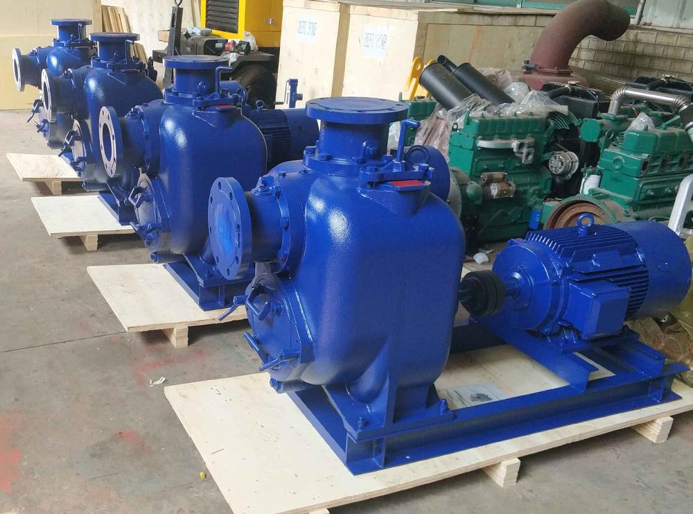 发往马来西亚的4寸电动自吸排污泵